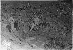 Bombardment of Fort Stevens (Wikipedia)